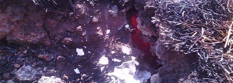 Limpopo-vulkan-784x280