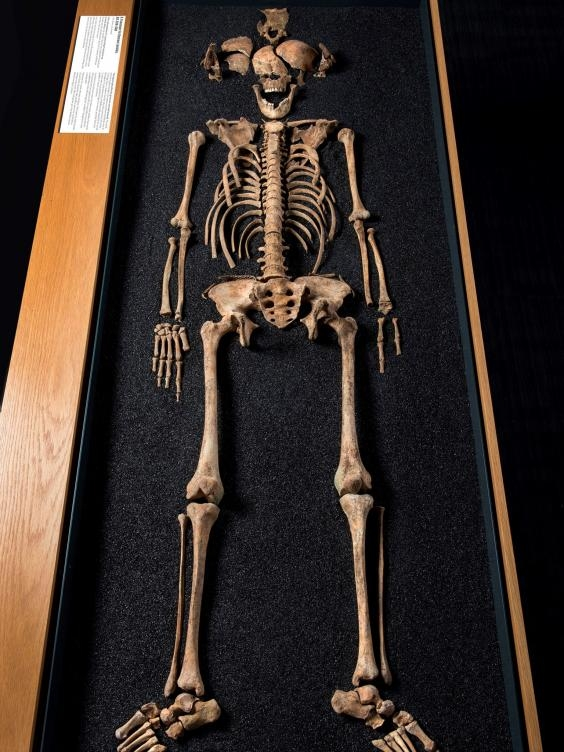 chinese-skeleton-in-ancient-london-2