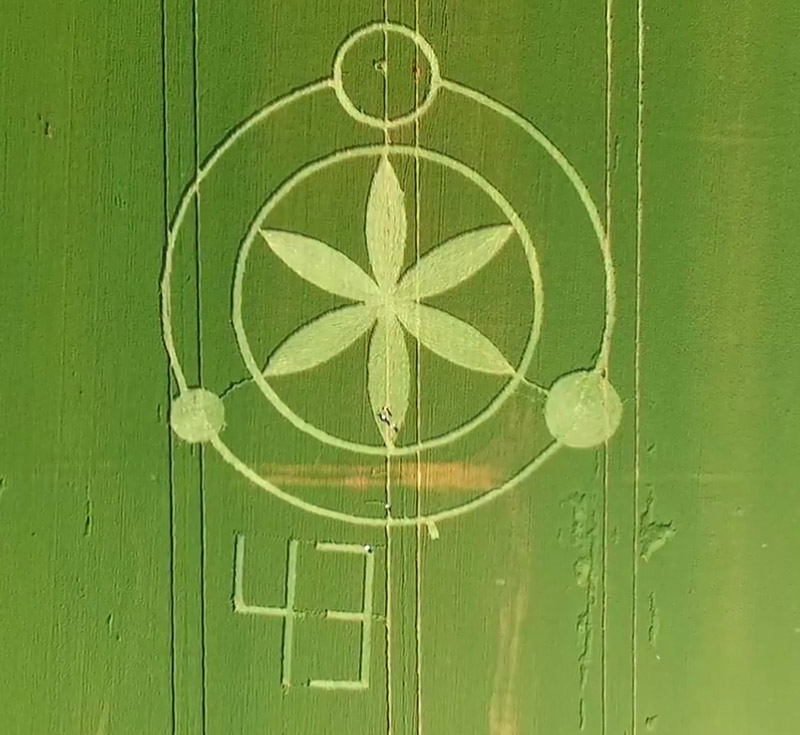 Crop Circles In Brazil There Was A Picture On The Box Earth
