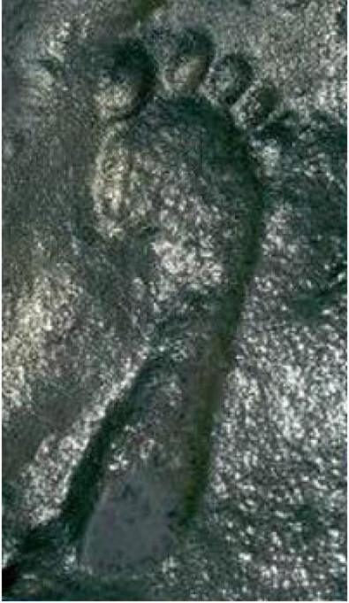 ancient-footprint