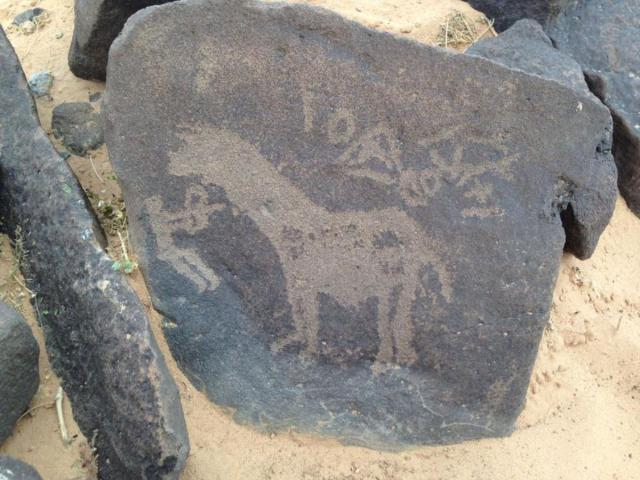 small-petroglify-v-iordanii-6
