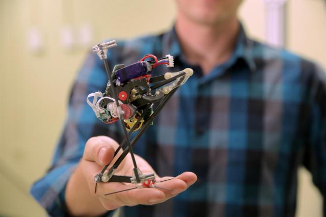 small-robot-salto-2