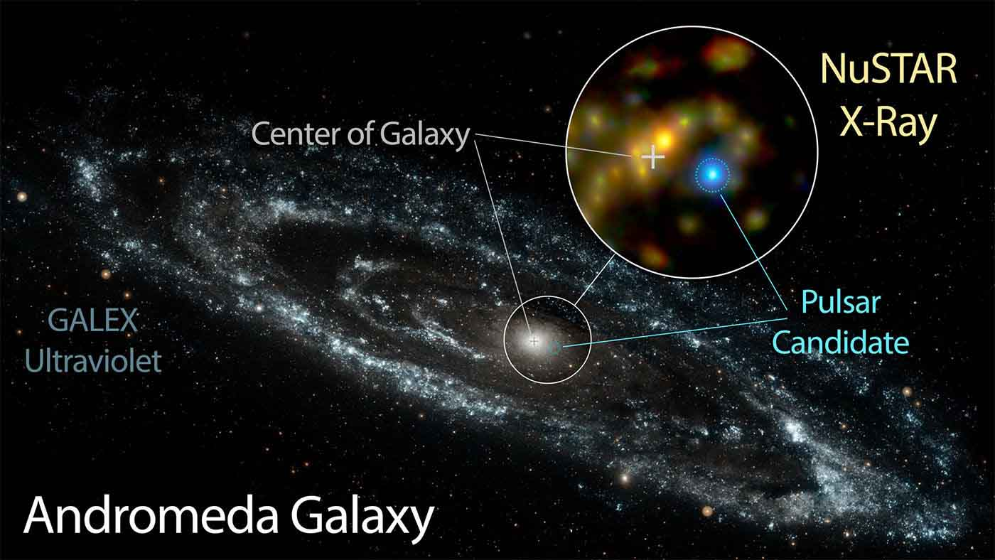 Riddle of a bright X-ray source in the Andromeda galaxy ...