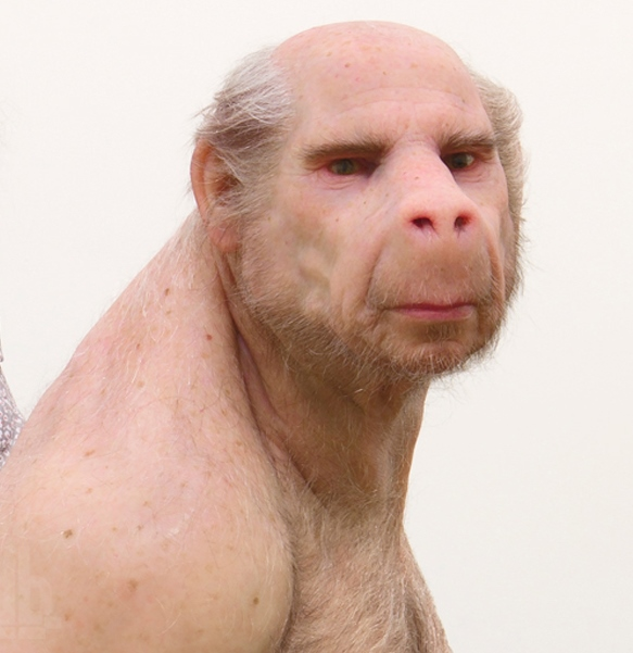 Image result for image of First Ever Human-Monkey Hybrid