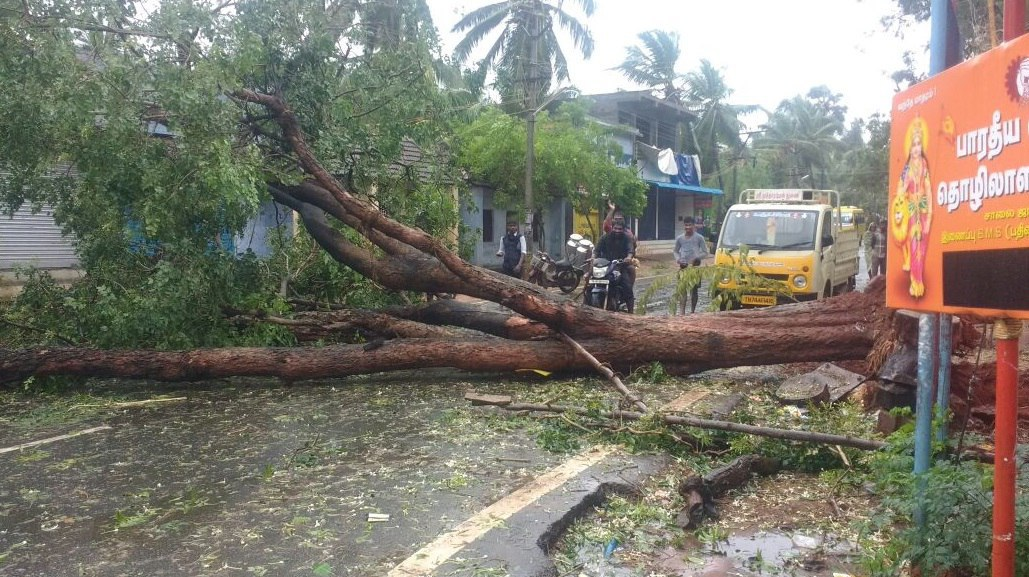 consequences of cyclone