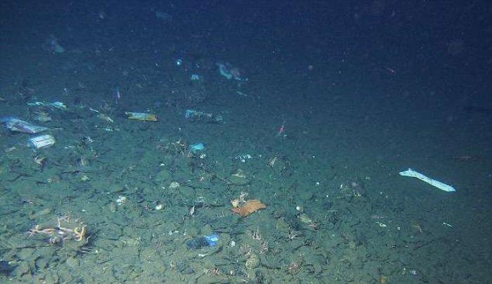 Plastic debris found even in the Mariana Trench | Earth ...