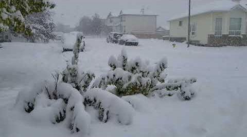 Canadian city Calgary snowed down | Earth Chronicles News
